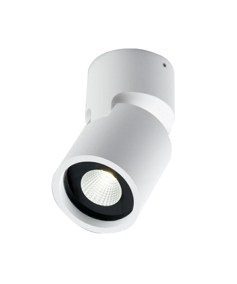 Seneste Tip 2 Loftlampe LED Hvid - LIGHT-POINT BZ53